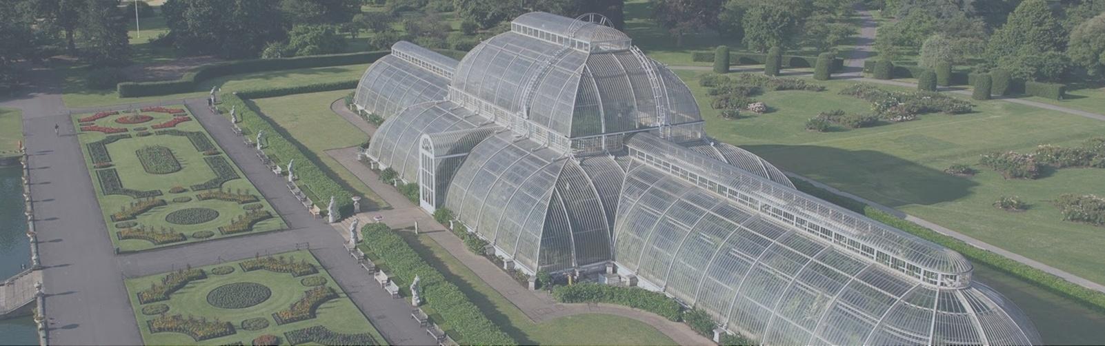 Kew Banner-139346-edited.jpg