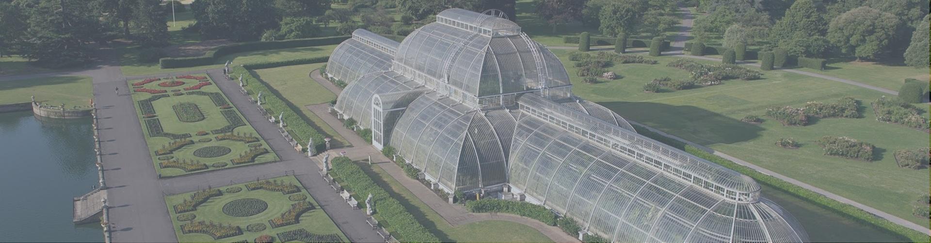 Kew Banner.jpg