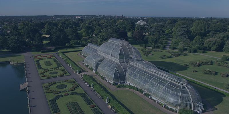 Kew Template.png