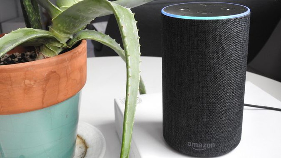 Alexa, Can You Really Help Me Manage My Network?
